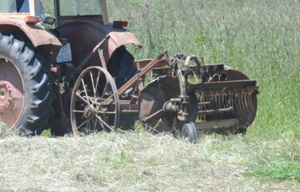 Old horse drawn hay rake